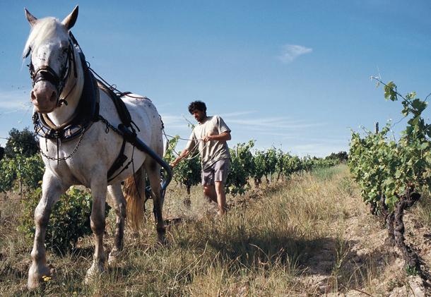 Grecia, trabajos en el campo
